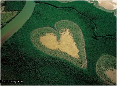 Mango koku sirds Jaunā... Autors: vitux 9 dabas sirdis