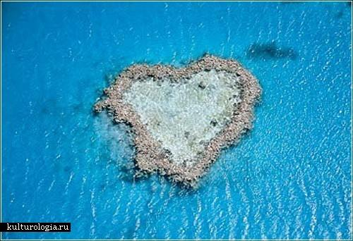 Rifs sirds formā Lielais... Autors: vitux 9 dabas sirdis