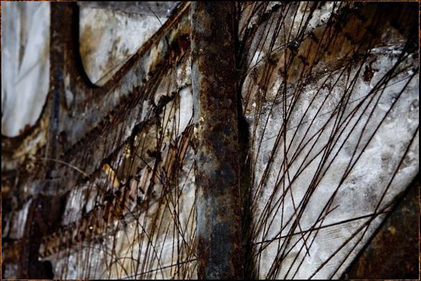 Autors: LittleWolf Pamestā lielā Barra Kolonija (Svētās Margarietas slimnī