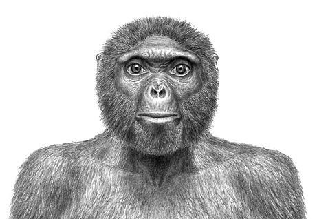 5 atrasts vecākais cilvēka... Autors: chesterfields top 10 atklājumi 2009. gadā
