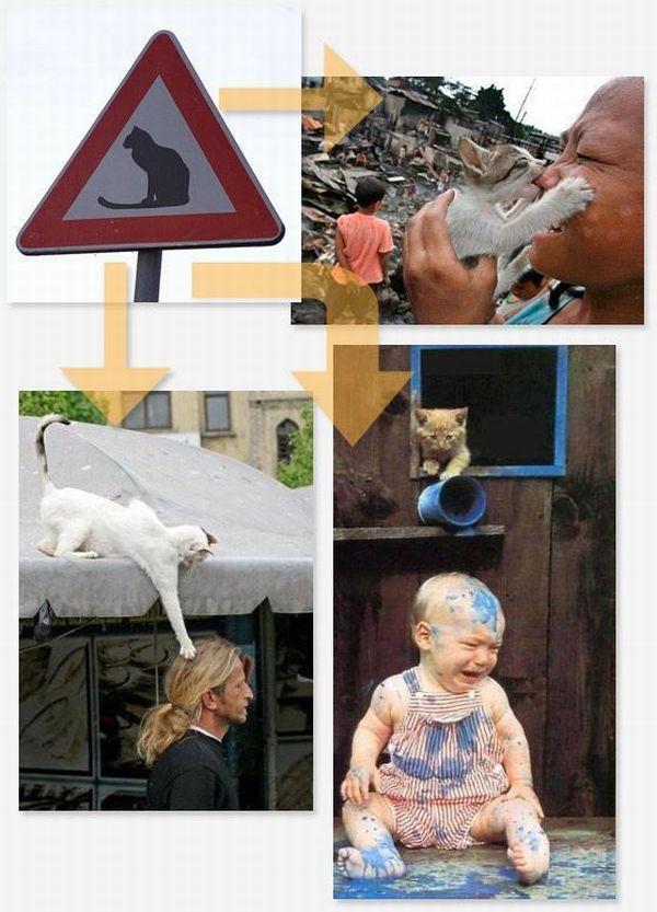 Autors: Fosilija Dažādas ceļa zīmes!