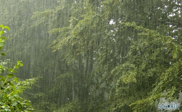 Autors: SharK Joki lietainai dienai.