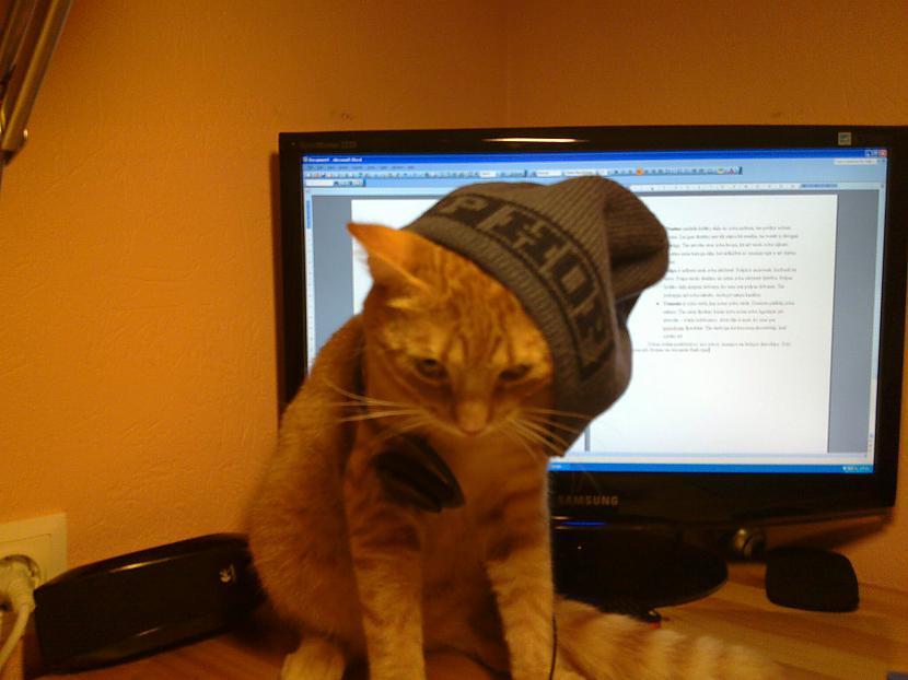 Te viņš dusmīgs palika  Autors: Melvins Kaķītis :)