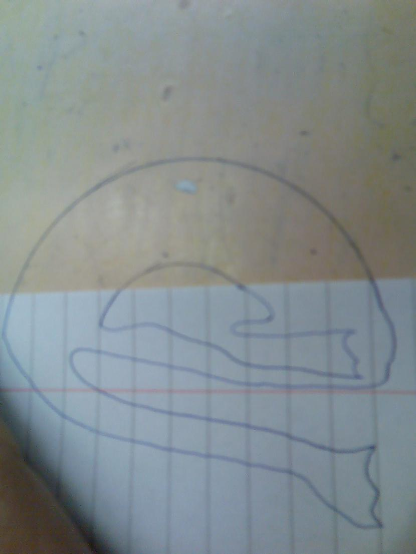 Bet šeit es redzu medūzas māti... Autors: Optimists NaCl Kā mainās priekštats par attēlu pagriežot to ?-10.daļa