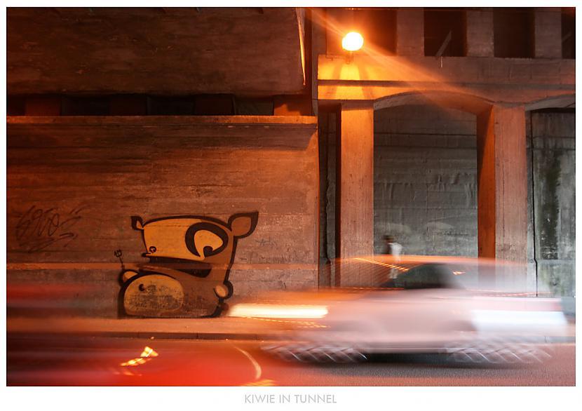Kiwie  Protams Protams pašās... Autors: Ruudiiz Rīgas Populārākie Graffiti Zīmētāji