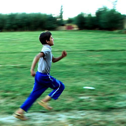 Kā vējš skrien kā miets arī... Autors: ashulis Būs vien jātic!