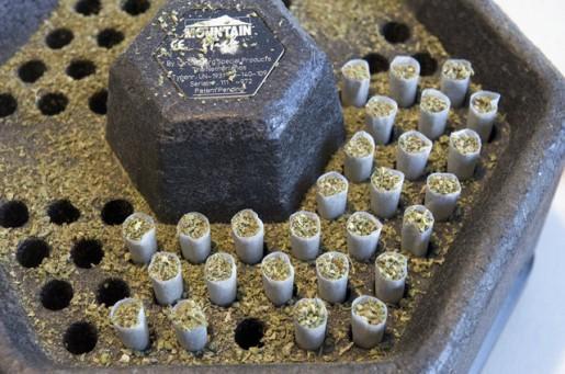 NORML veicināja referendumu... Autors: Tavs Sencis Medicīniskās marihuānas ražotne Kalifornijā