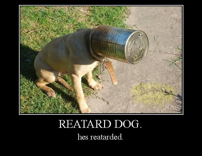 Autors: Fosilija reatard dog.