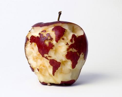 Vašingtona Ņujorka un... Autors: robotxq9 18 fakti par āboliem!