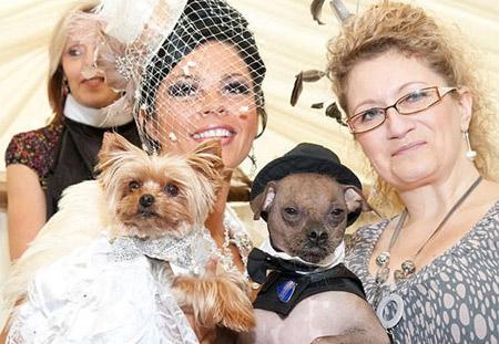 Dārgākās suņu kāzas pasaulē... Autors: ellah Pasaules dārgākais