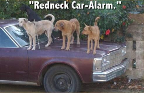 Real rednecks have 3level car... Autors: Insomnia Rednecks xD