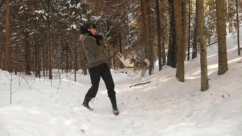 Naivais mēģinājums mani nokost... Autors: Ebigeila Mans trakais duksis ziemā! :D