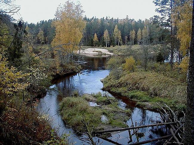 Vijas upe pie ietekas Gaujā Autors: jussiss Vijciema Ev. Luteriskā baznīca