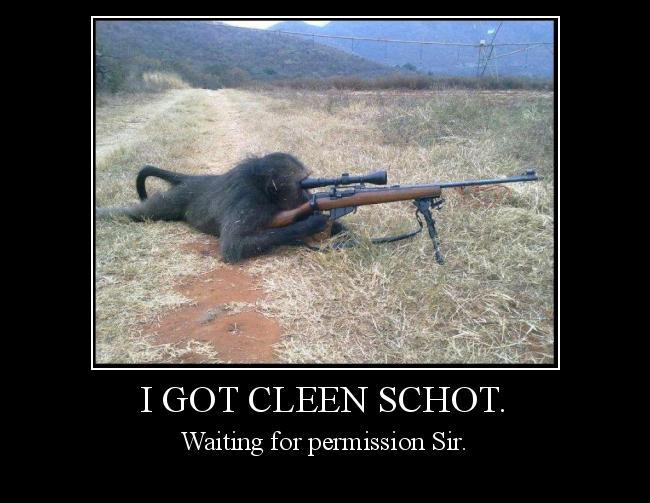 Autors: Risoft I got cleen schot.