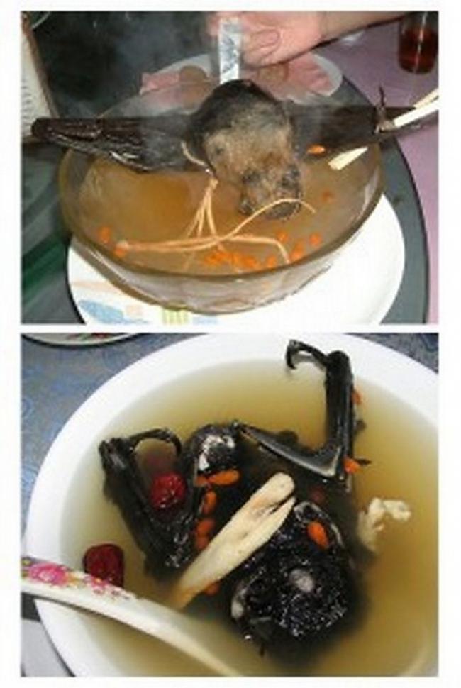 Fugu Autors: flammable 5 dīvaini Āzijas valstu ēdieni...