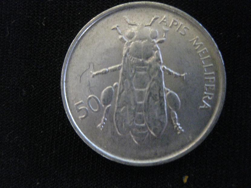 Uzmini nu kas tas ir  bite  nē... Autors: kikoO Kolekcija