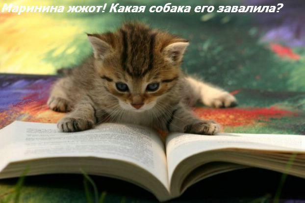 Autors: Fosilija Jautrībai...