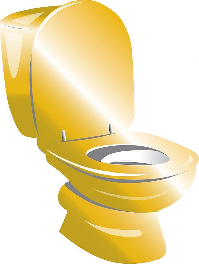 Kas notiktu ja VISI tualetēs... Autors: waterstar Vai vari atbildēt?