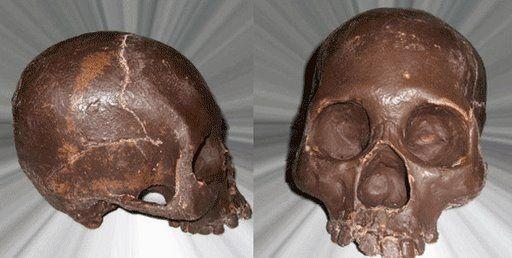 Galvas kauss Labi noderētu... Autors: ArtursAEJ šokolādes māksla.