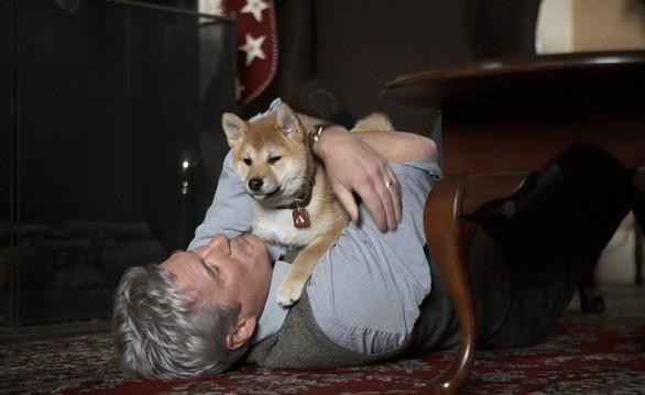 Ierodoties Šibujas stacijā... Autors: CrazyMaineCoonLover Hachiko: The World's Most Loyal Dog