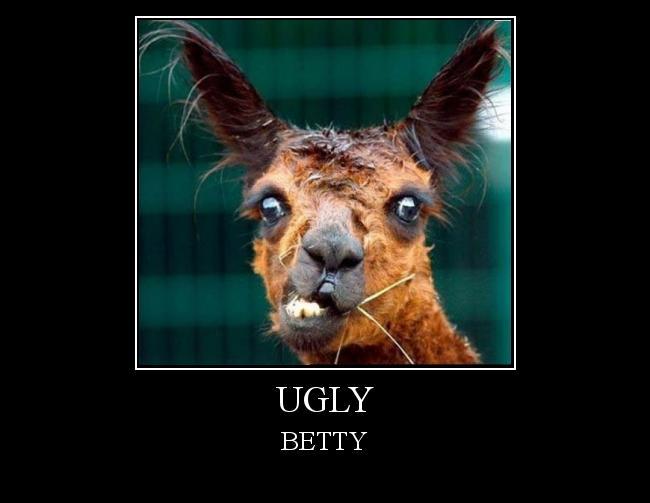 Autors: blagues ugly