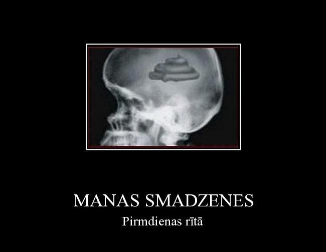 Autors: Fosilija Manas smadzenes