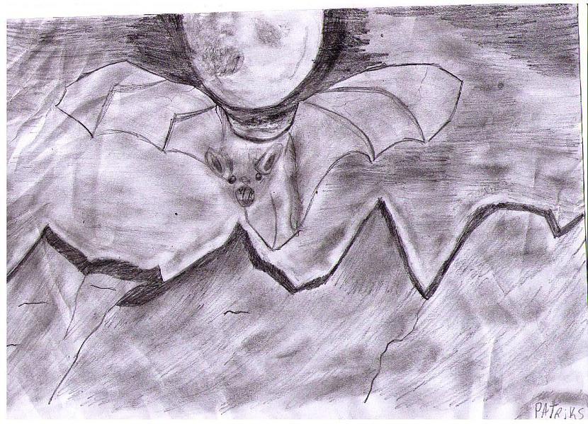 Zīmēju apmēram 1h Autors: LucK Manuprāt mani labākie zīmējumi
