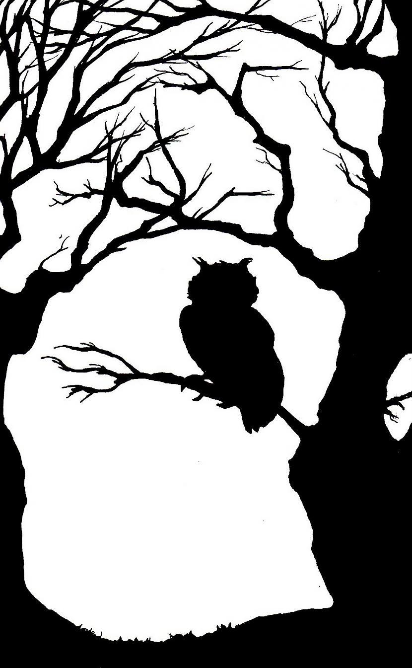 Pūce ir populārs Helovīnu... Autors: Bloody April 21 fakts par un ap Helovīniem