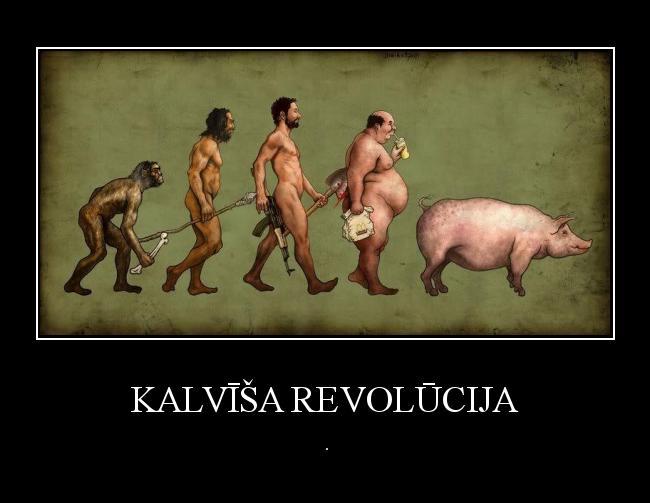 Autors: Kārumnieks Kalvīša revolūcija