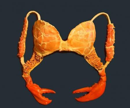 Autors: Skorpii Trakākie sieviešu bikini II