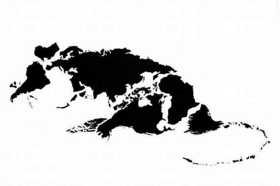 Žurka Autors: Atizs Kontinenti-Dzīvnieki