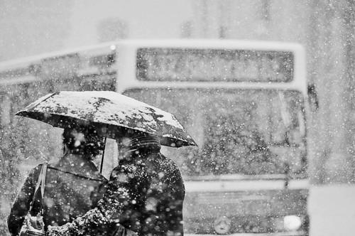 Autors: querida Kur slēpjas ziemas burvība?