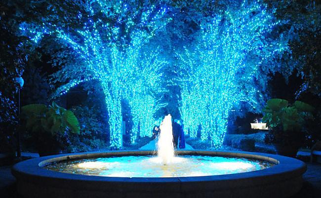 Autors: Ženādijs Svētku dizains: Atlantas botāniskais dārzs
