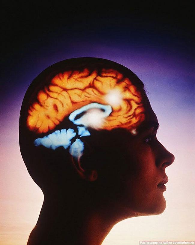 Nervu impulsi cilvēka ķermenī... Autors: Masja Ātruma rekordi