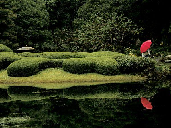 Autors: Fosilija Simply Beautiful Photos: Palette
