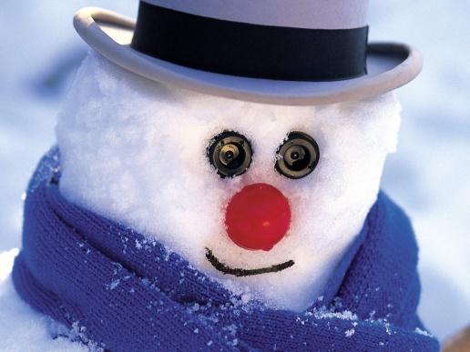 Sniegavīru pasaulē pazīst... Autors: ZveeRiņš fakti par sniegavīriem.