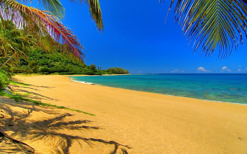 Autors: Fosilija Paradīzes pludmales !
