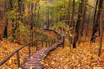 Papes dabas parks atrodas pašā... Autors: jaunaisgads latvijas skaistās ainavas