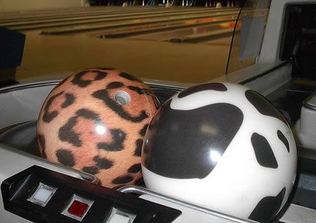 Dzīvnieku nospiedumi Autors: AldisTheGreat 12 Satriecošākās boulinga bumbas.