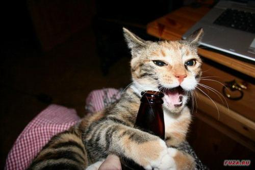 Autors: Fosilija Dzīvnieki kas mīl alu!