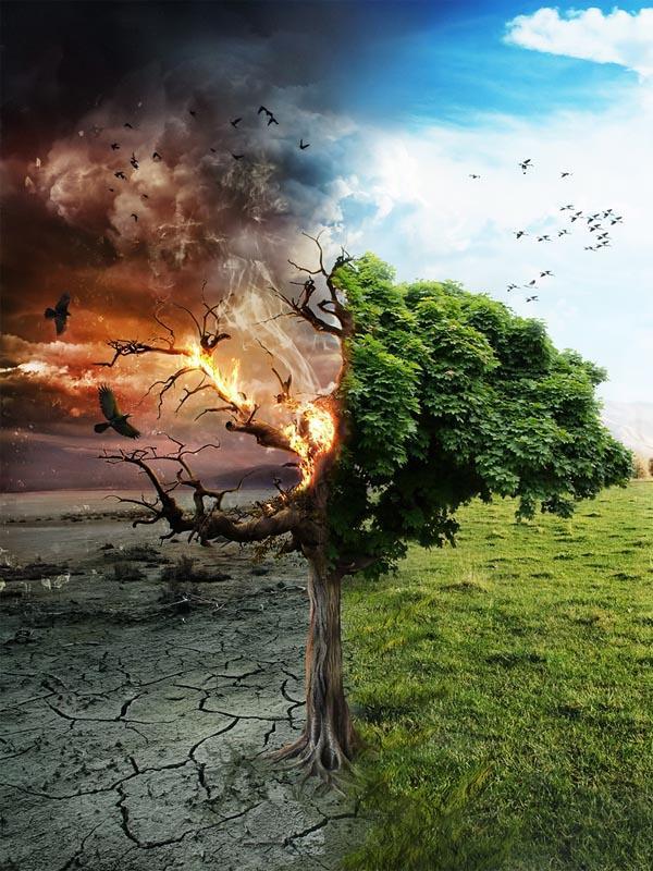 The Choice Izvēle by Essfero Autors: Coop foto manipulācijas 2