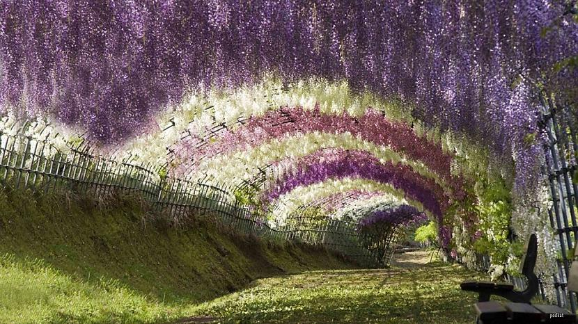 Japānanbsp Autors: sabaa310 10 no skaistākajām vietām uz zemes