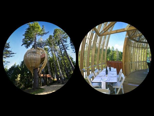 Treehouse Restaurant in New... Autors: Fosilija 10 Interesantākie restorāni Pasaulē =)