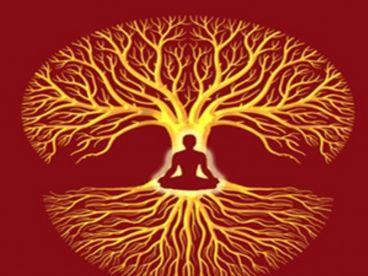 Autors: olgatm Kādēļ tieši Transcendentālā Meditācija, nevis citas meditāci