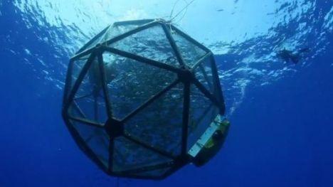 Peldoscaronā zivju fermaHavaju... Autors: R1DZ1N1EKS 2012.gada interesantākie izgudrojumi.