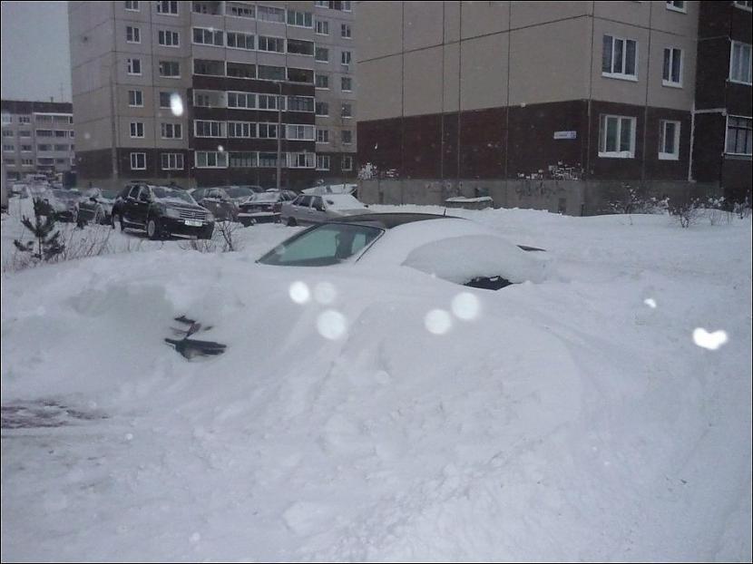 Autors: Fosilija Ziema Krievijā...