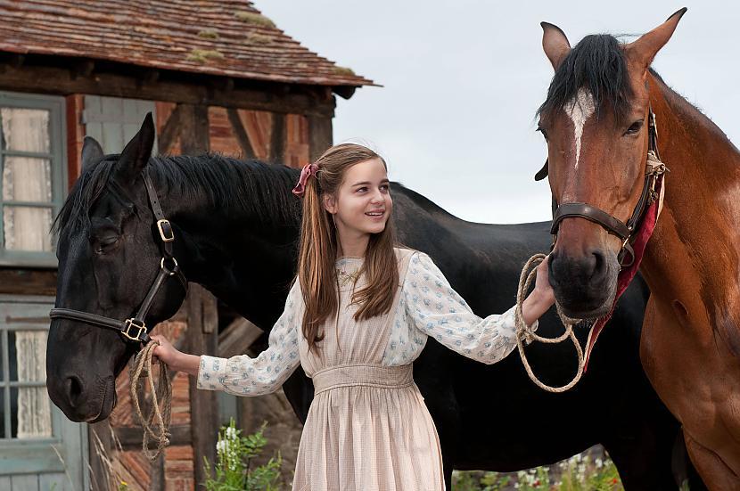 War Horse Autors: XxlordoftheringsxX Mans Filmu Top 4