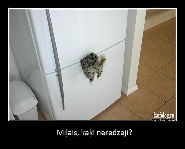Autors: Fosilija melnie ramji:))