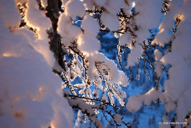 23FEBRUĀRIS nbsp Sibīrijā... Autors: charlieyan Ekstrēmie laikapstākļi: Marts-Februāris