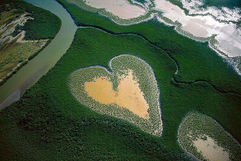 Jaunā Kaledonija nbsp New... Autors: Šamaniss Kā izskatītos pasaule ja tu būtu putns.